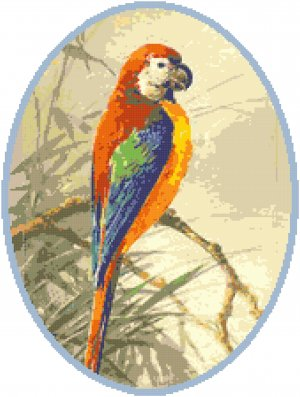 Red and Green Winged Macaw Pattern Chart Graph