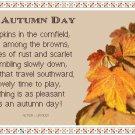 An Autumn Day Sampler Pattern Chart Graph