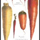 Root Vegetables Pattern Chart Graph