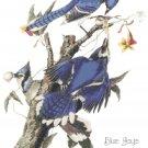 Audubon Blue Jays Pattern Chart Graph