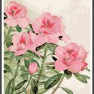 Azalea Blooms Pattern Chart Graph