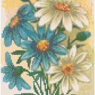 Antique Brachycome Flower Seed Packet Pattern Chart Graph
