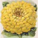 Zinnia Flower Seed Packet Pattern Chart Graph
