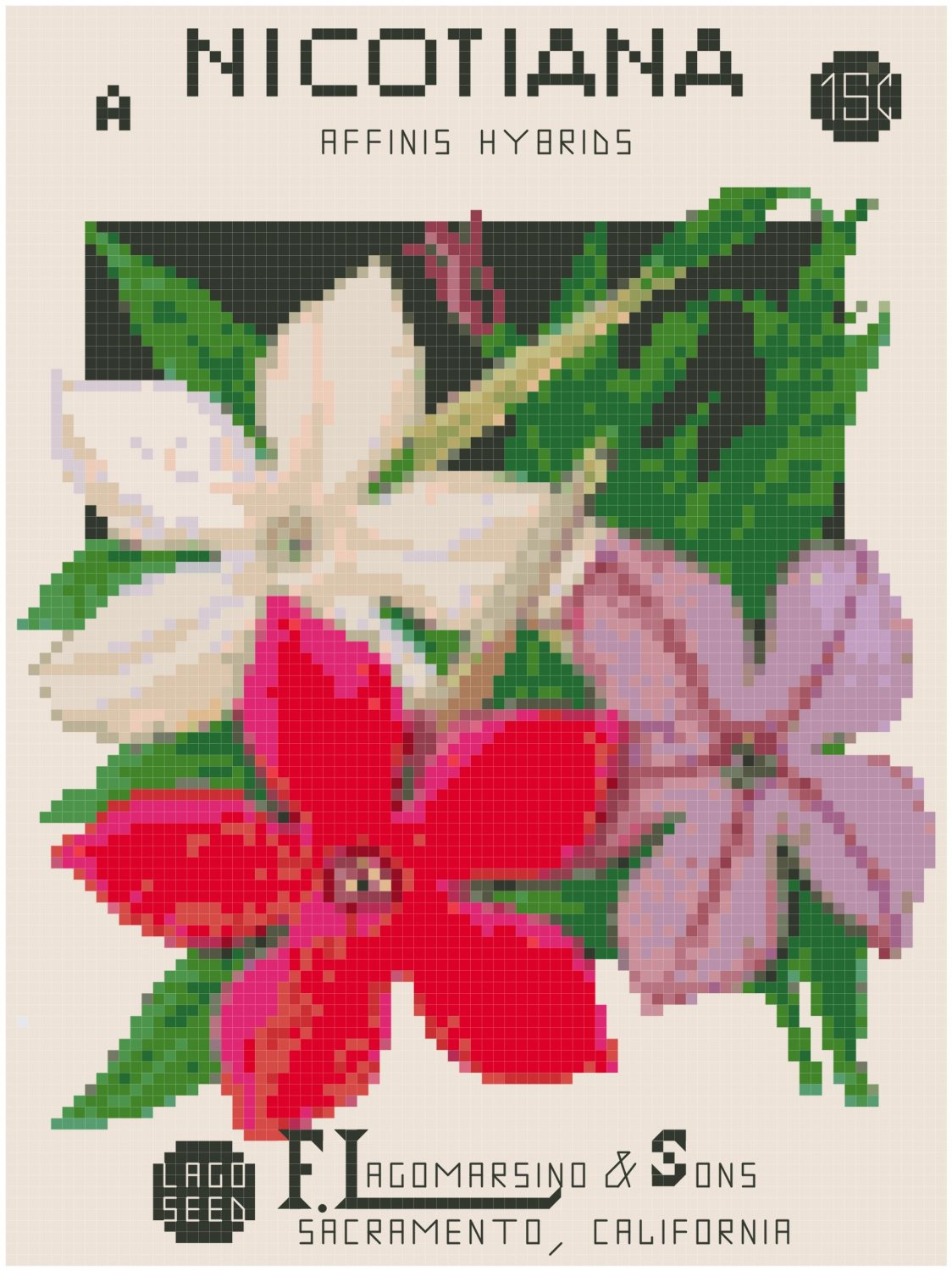 Antique Nicotiana Flower Seed Packet Pattern Chart Graph