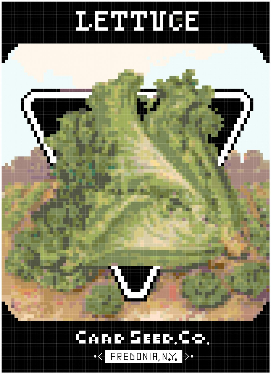 Antique Lettuce Seed Packet Pattern Chart Graph