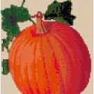 Antique Pumpkin Seed Packet Pattern Chart Grapj