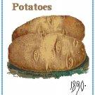 Country Potatoes Cross Stitch Pattern Chart Graph