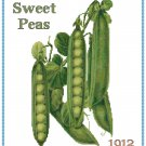 Country Sweet Peas Cross Stitch Pattern Chart Graph