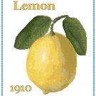 Country Lemon Cross Stitch Pattern Chart Graph
