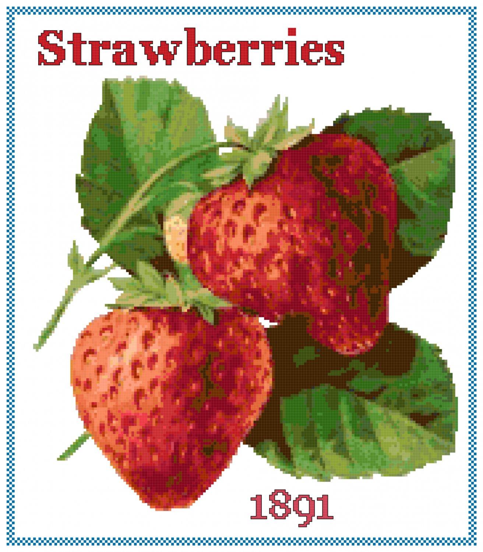 Strawberries Cross Stitch Pattern Chart Graph