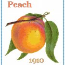 Country Peach Cross Stitch Pattern Chart Graph