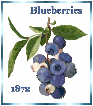 Blueberries Cross Stitch Pattern Chart Graph