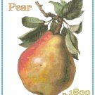 Country Pear Cross Stitch Pattern Chart Graph
