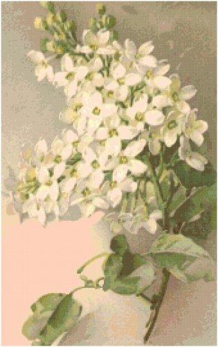 White Lilacs Cross Stitch Pattern Chart Graph by Catherine Klein