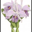 Cattleya Maximus Orchid Cross Stitch Pattern Chart Graph
