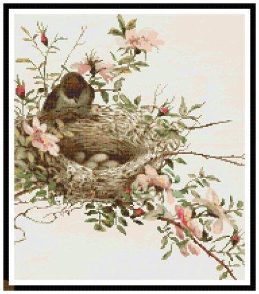 Bird Nest on Wildroses Branch Cross Stitch Pattern Chart Graph
