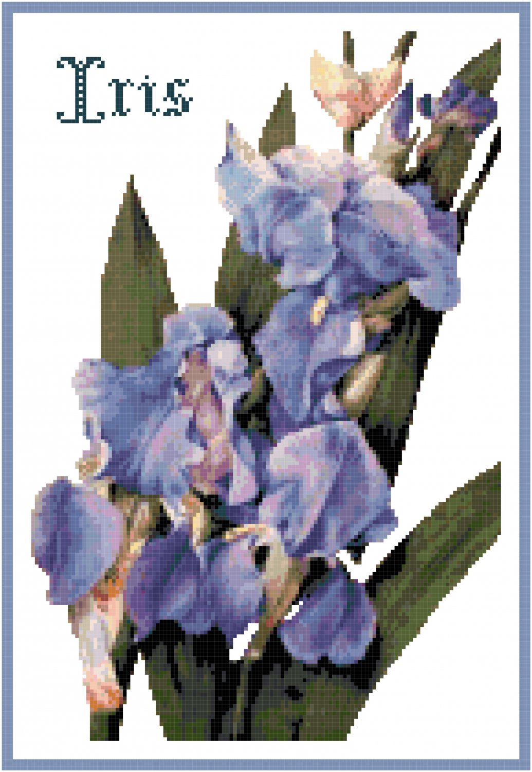 Deep Blue Iris Counted Cross Stitch Pattern Chart Graph