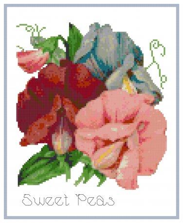 Colorful Sweet Peas Cross Stitch Pattern Chart Graph