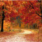 Autumn Walk in the Woods Pattern Chart Graph