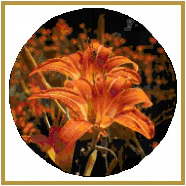 Orange Blaze Daylily Pattern Chart Graph
