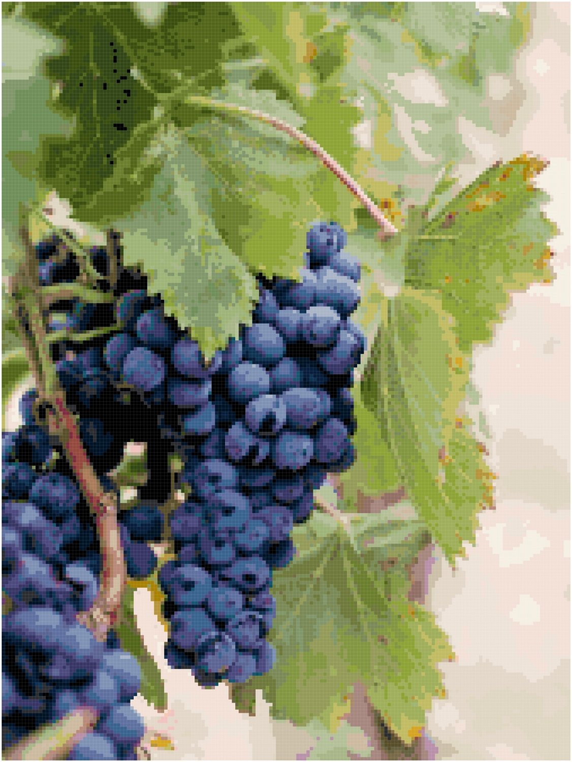 Abundant Fruit of the Vine Pattern Chart Graph