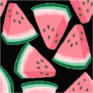 Watermelon Seat or Pillow Top X-Stitch or Needlepoint pattern chart graph