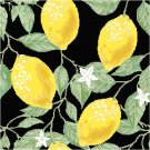 Lemons Seat or Pillow Top X-Stitch or Needlepoint pattern chart graph