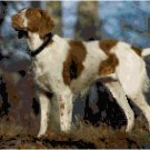 American Brittany Hunting Dog Pattern Chart Graph