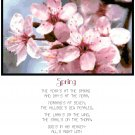 Spring Poem Cross Stitch Pattern Chart Graph