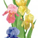 Spring Iris Banner Cross Stitch Pattern Chart Graph