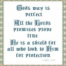 Protection - God's Way Is Perfect Pattern Chart Grapy