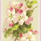 Apple Blossoms by Catherine Klein Pattern Chart Graph