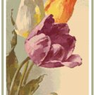 Tulips 1 by Catherine Klein Pattern Chart Graph