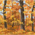 Afternoon in Autumn Cross Stitch Pattern Chart Graph