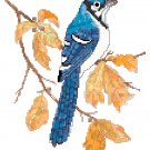 Autumn Bluejay by Kate Robards Pattern Chart Graph