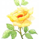 Yellow Rose Cross Stitch Pattern Chart Graph