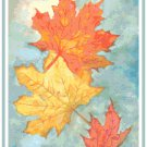 Falling Maple Leaves Pattern Chart Graph