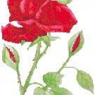 Red Velvet Rose Cross Stitch Pattern Chart Graph