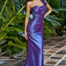 Bridesmaid/ formal/ wedding guest dresses AD916