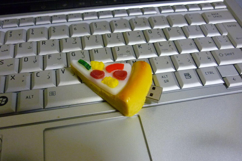 4GB CUTE PIZZA Flash Memory Stick Thumb Drive