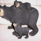 Black Bear & Two Playful Cubs  BNK486