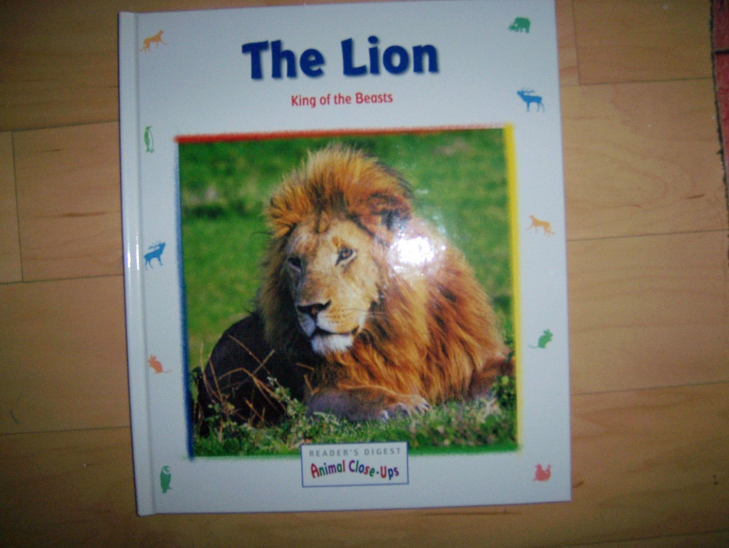 """""""The Lion"""" The King Of The Beasts  BNK551"""