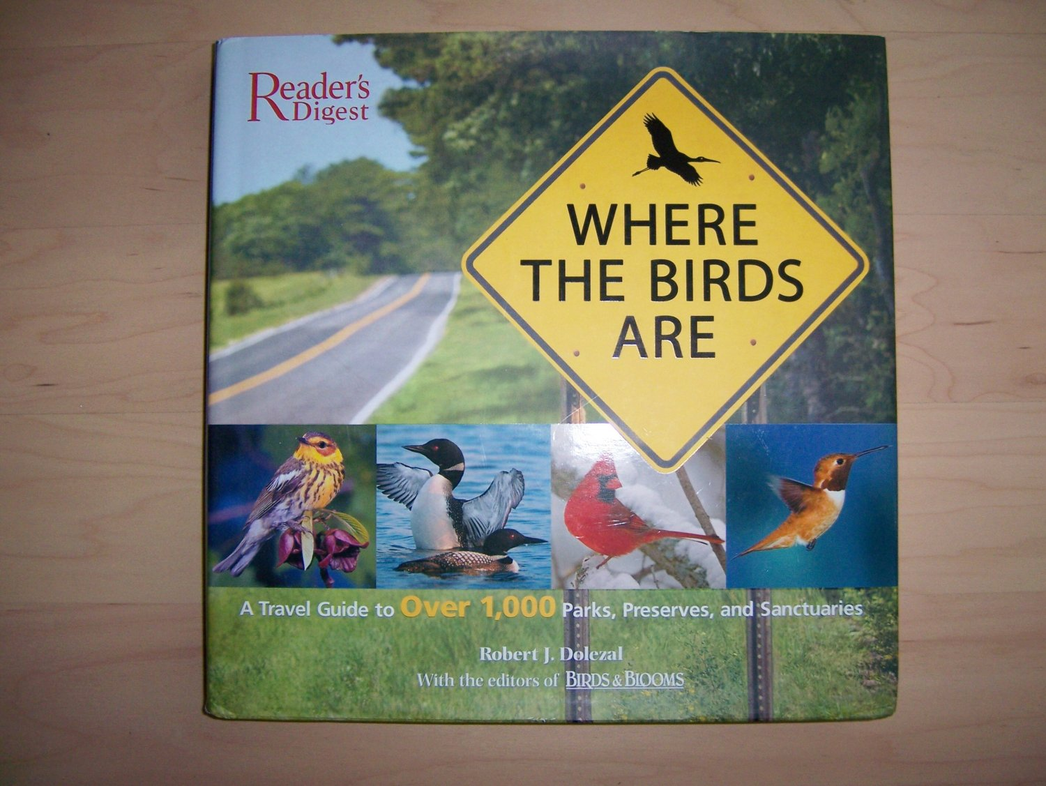 Where The Birds Are Complete Guide With Maps And Info BNK692