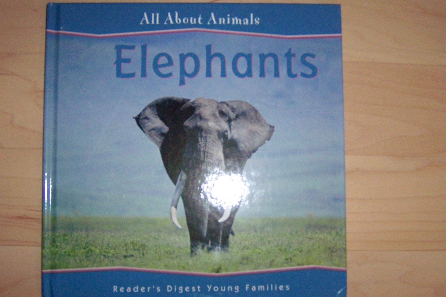 """All About Animals """"Elephants BNK703"""