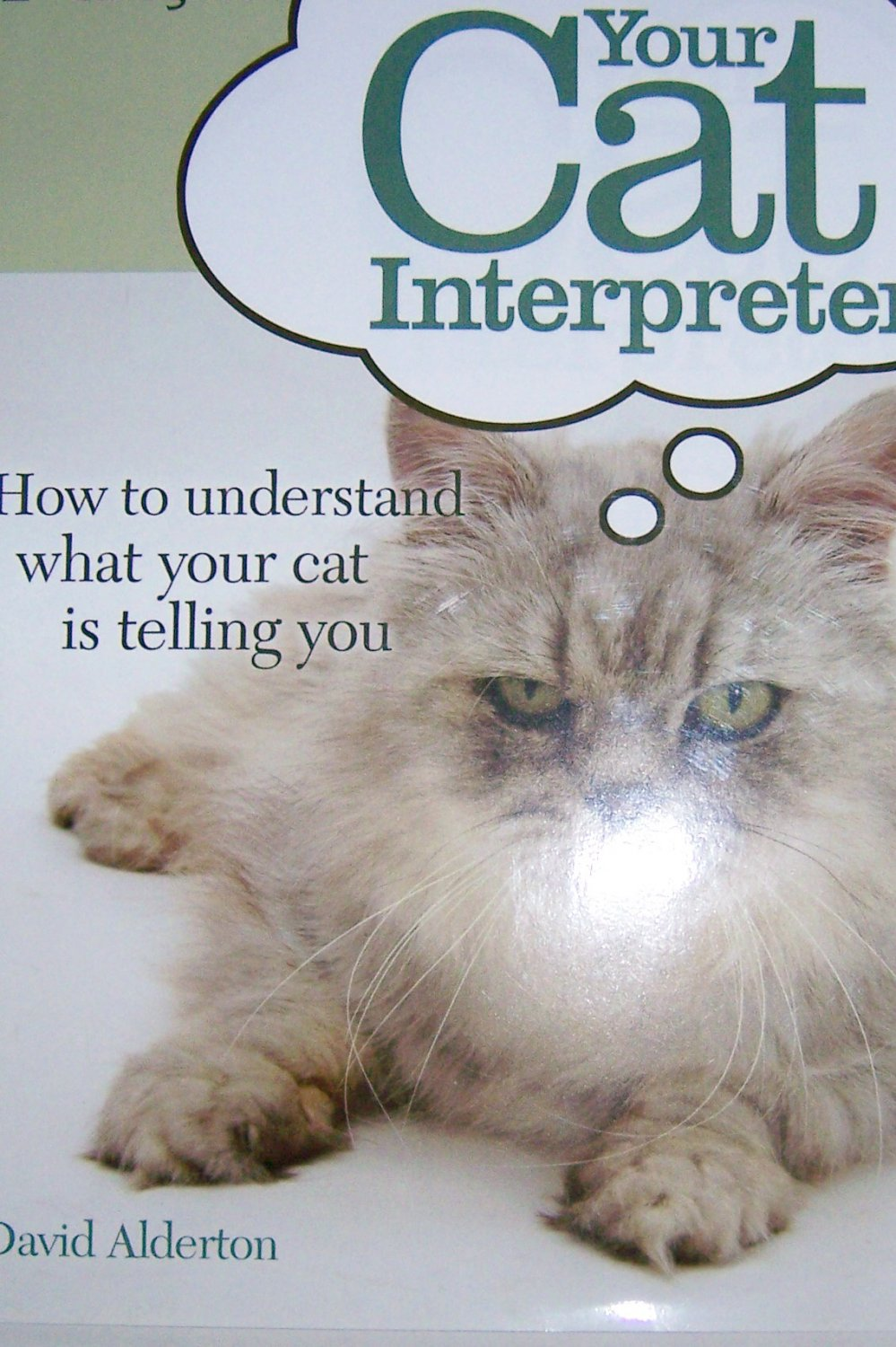 Cat Interpreter To Understand All She Says And Does BNK717