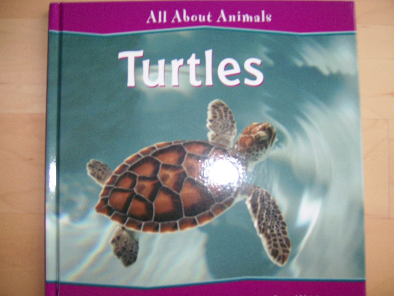 All About Animals Turtles  BNK836