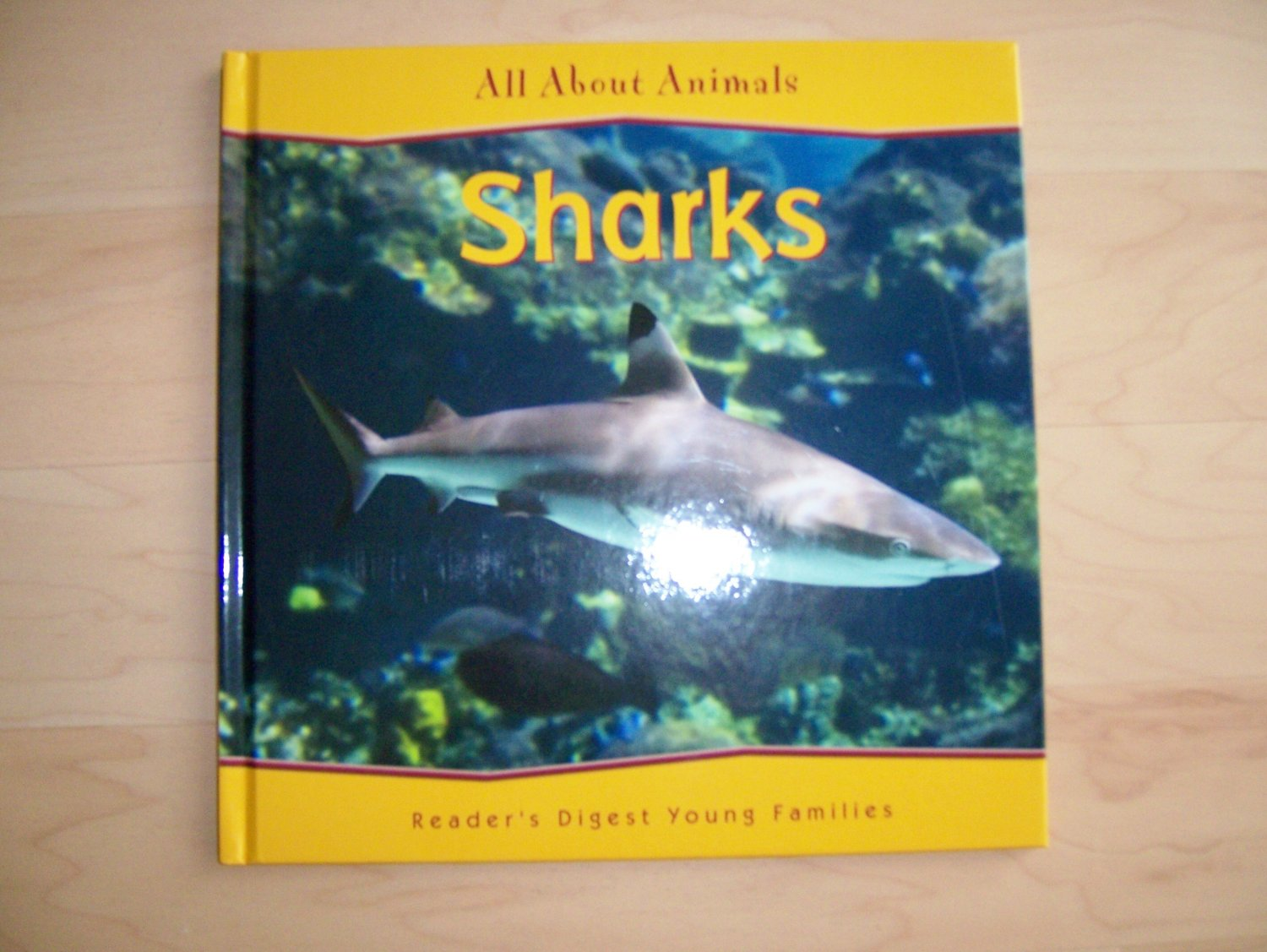 All About Animals Sharks  BNK856