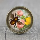 Bee Glass Cabochon Bronze cabinet Dresser Knobs pull / Dresser Pull