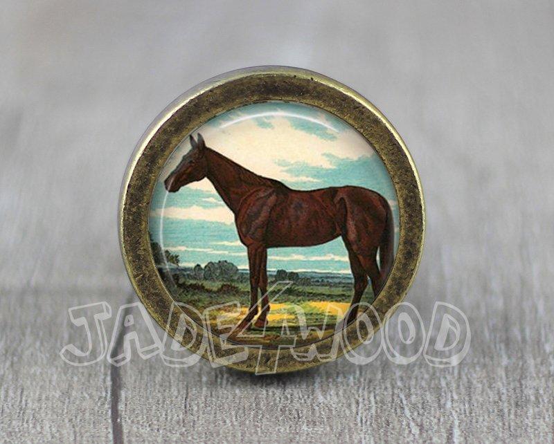 Horse Glass Cabochon Bronze cabinet Dresser Knobs pull / Dresser Pull