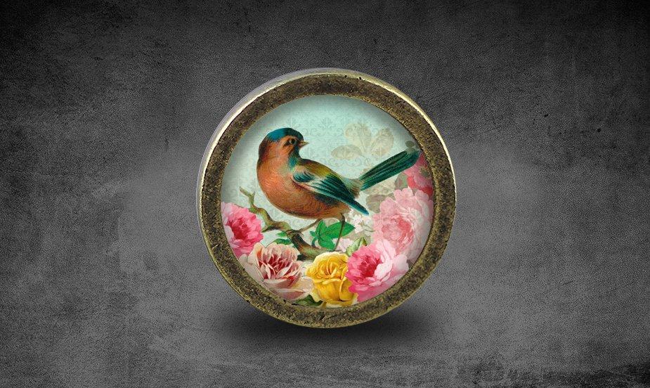 Bird Glass Cabochon Bronze cabinet Dresser Knobs pull / Dresser Pull